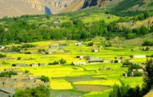 Shimshal Village